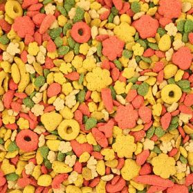 Kaytee Exact Rainbow Complete Food for Parrots & Conures 2.5lb
