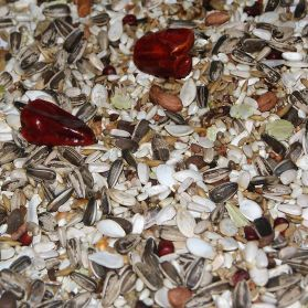 AS10 Large Parrot Seed Mix - 5kg