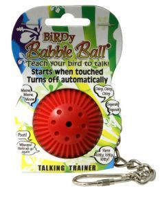 Birdy Babble Ball On Hanging Chain