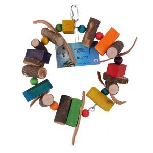 Wood And Leather Ring Bird Toy