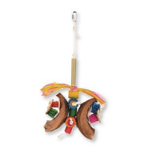 Butterfly Natural Bird Toy