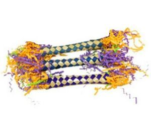 Crinkle Sticks Bird Foot Toy Pack of 3