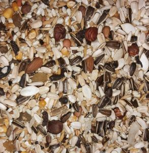 AS20 1KG Low Sunflower Parrot Seed