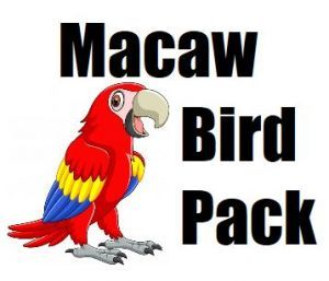 Macaw Toy Pack