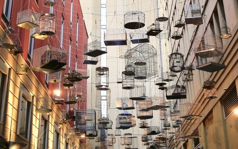 How do you remodel a birdcage?