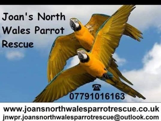 Joans NW Rescue