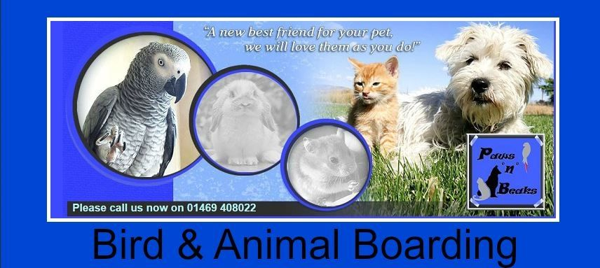 Paws and Beaks Animal Boarding